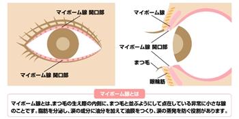 http://www.karada-aging.jp/