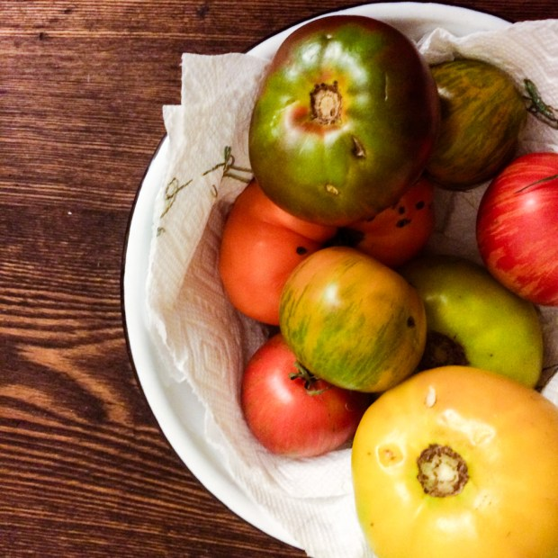 Heirloom Tomatoes from Green City Market | FrannyCakes