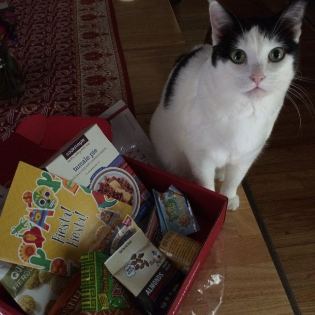 Cecelia the Cat is jealous of my Love with Food box!