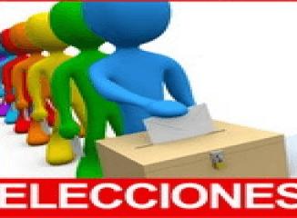 votar elecciones 2011