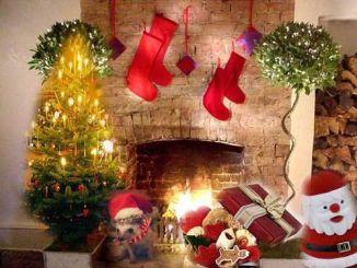 curiosidades de navidad