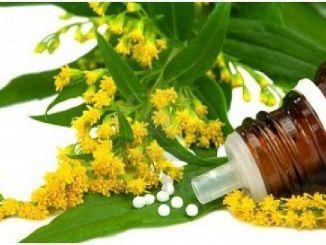 homeopatia y fitoterapia
