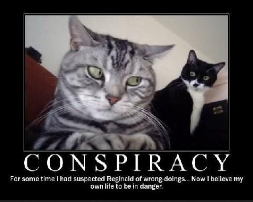 cat-conspiracy