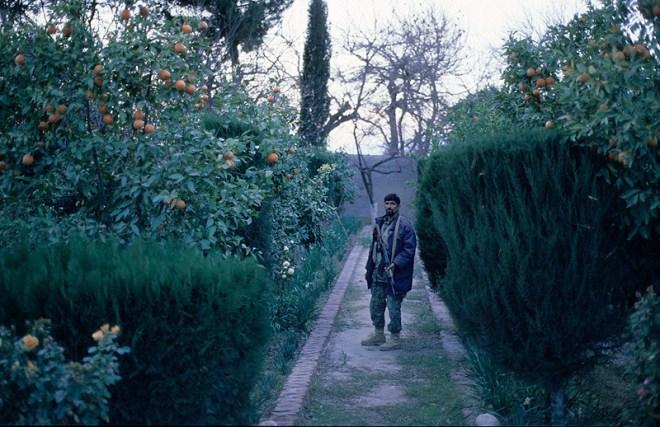 Jalalabad, Afganistan, 2008