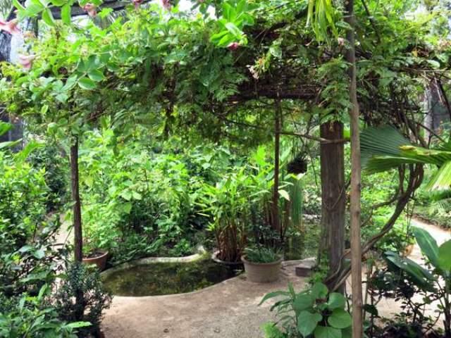 Banteay Srey Butterfly Centre in Siem Reap