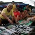 Carbon Market in Cebu
