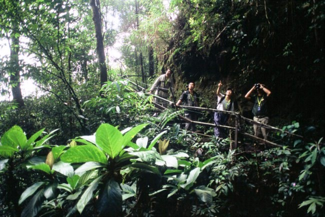 Kinabalu Nature Park in Kota Kinabalu