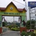 Melaka Zoo in Malacca