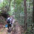 Trekking in Penang