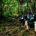 trekking, papua new guinea