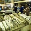 fish market, kuwait