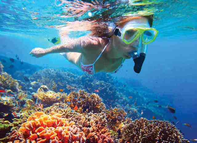 snorkeling, water activity, samui