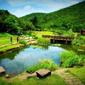 yangmingshan park, taipei, park