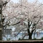 石川県 春を感じて能登を巡る旅はこちらからどうぞ