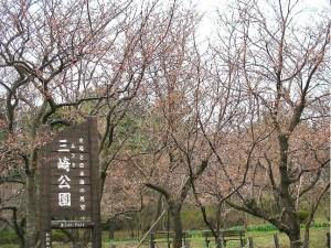 引用元:http://hojinashi.cocolog-nifty.com/
