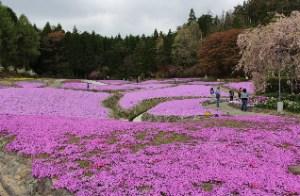 引用元:http://kimamanihiguhei.blog.fc2.com/