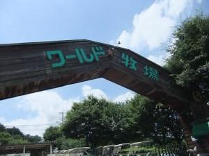 引用元:http://cnonbe.exblog.jp/