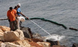 Limassol in call to curb beach pollution