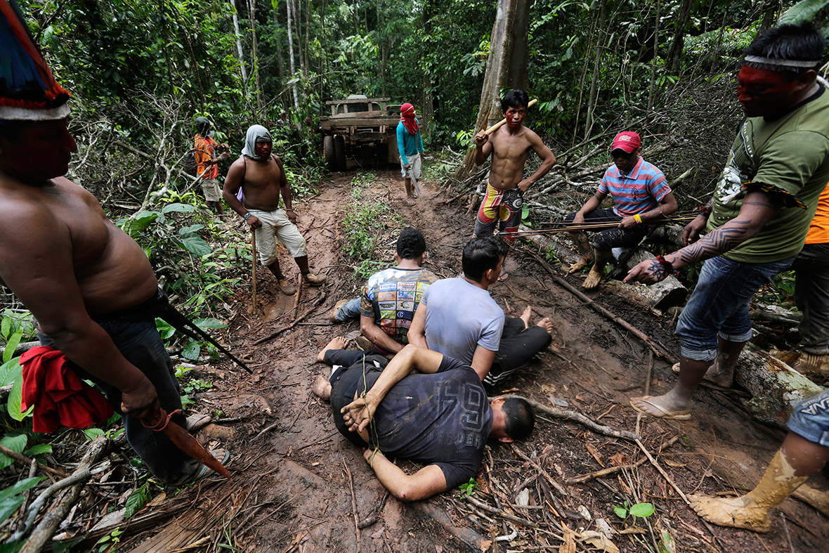 Amazon Indians strip, tie up and beat illegal loggers