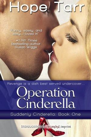 Operation Cinderella (Suddenly Cinderella, #1)