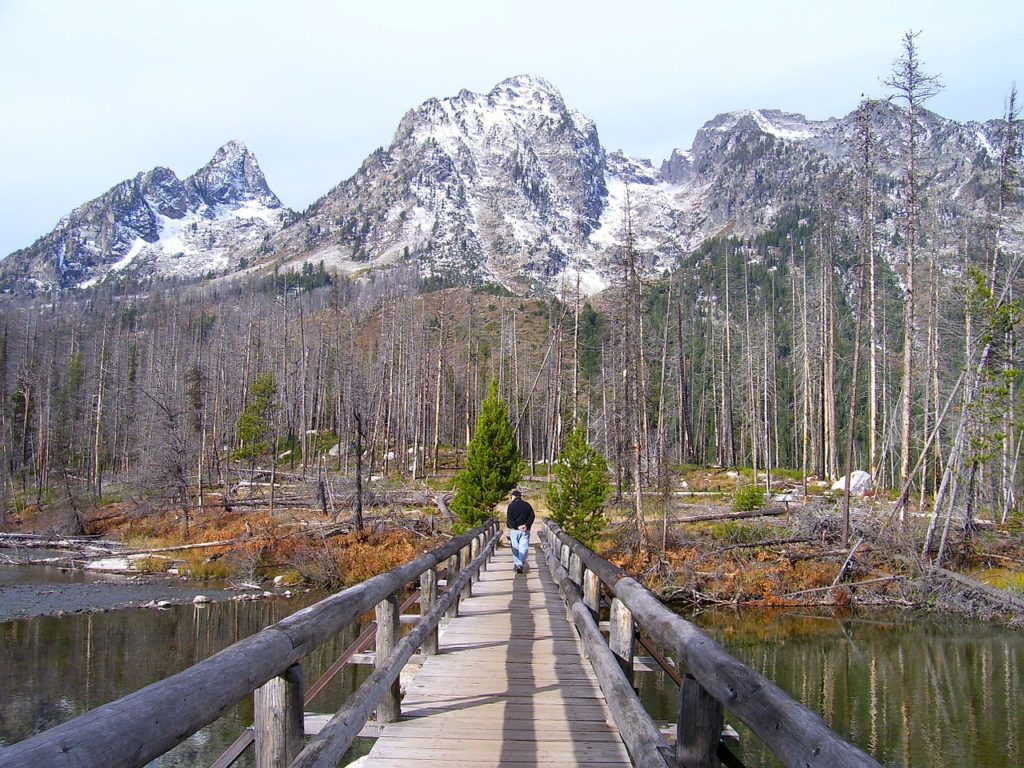 grand-teton-national-park-80563_1280