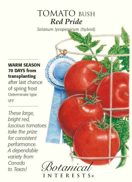 Medium Of Better Bush Tomato