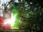 Bottle Tree: Whimsical Fun on the Farm!
