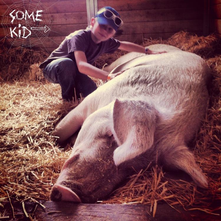 #MyPledge15 - The Gentle Barn