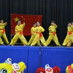 Children Wushu - Beginner  (1) (Medium)