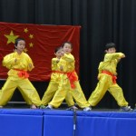 Children Wushu - Beginner  (11) (Medium)