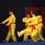 Children Wushu - Beginner  (5) (Medium)