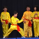 Children Wushu - Beginner  (7) (Medium)