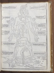 In the ancient and medieval world, bodily health was further grounded in a system of humors (blood, black bile, yellow bile, and phlegm). Image: Johannes de Kethem, Fasciculus medicie (Venice: Per Cesarem Arrivabenum, 1522). Credit: John Martin Rare Book Room, University of Iowa.