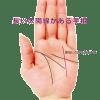 ラッキーな手相⑭ 薬指に向かって伸びる「太陽線」が長い