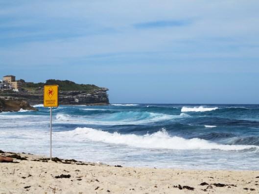 bronte beach sydney