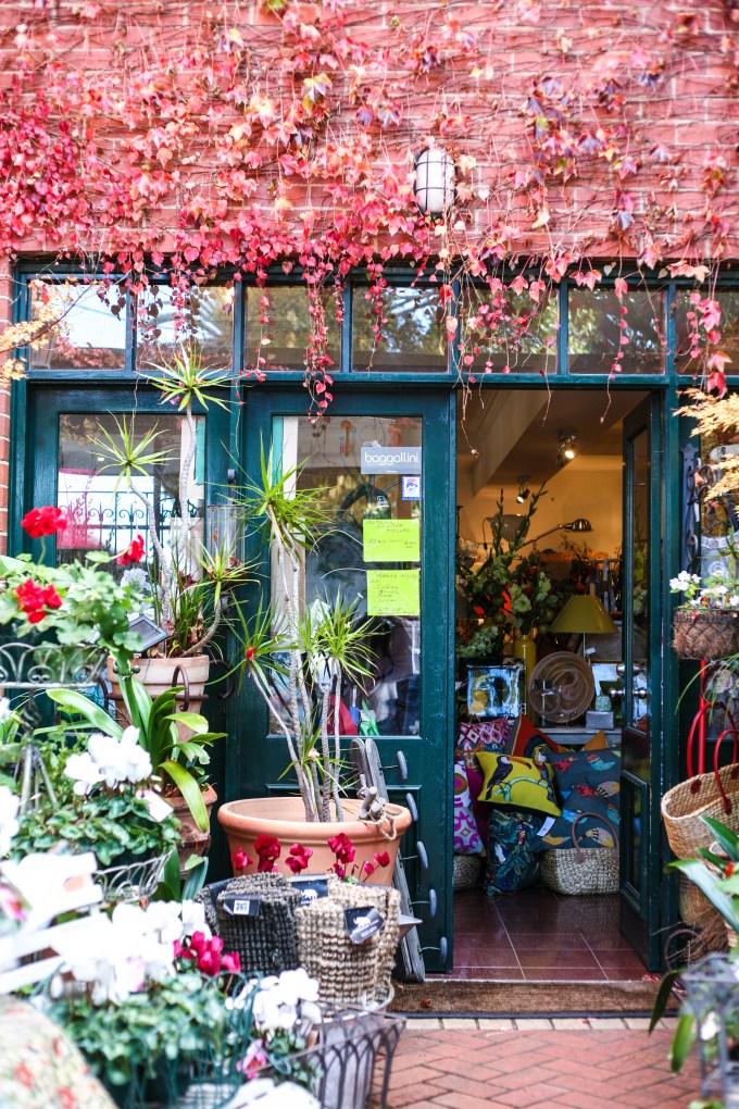 queenscliff stores