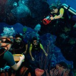 Diving in the aquarium with Epcot DiveQuest. Courtesy Walt Disney World