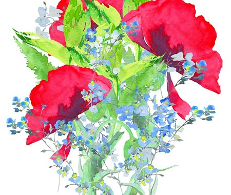 Poppies & Forget-Me-Nots