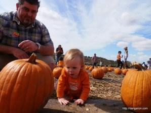 The pumpkin is as big as me!