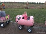 Riding a pig train,