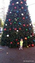Christmas Tree in Orange