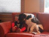 Oso loves Abby