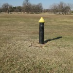 Why is there a fire hydrant in the middle of Forest Park?