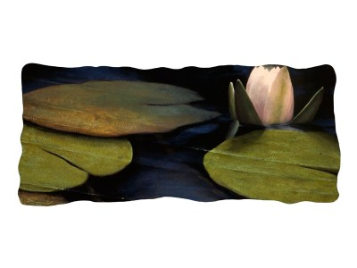 Evening Lily, 2003.