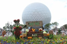 Walt Disney World - Day 1-15
