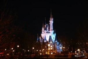 Walt Disney World Day 2 - Magic Kingdom-92