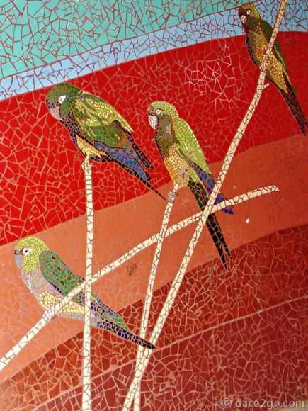 Paraderos Del Viento in Gualliguaica, close up detail of the parrots