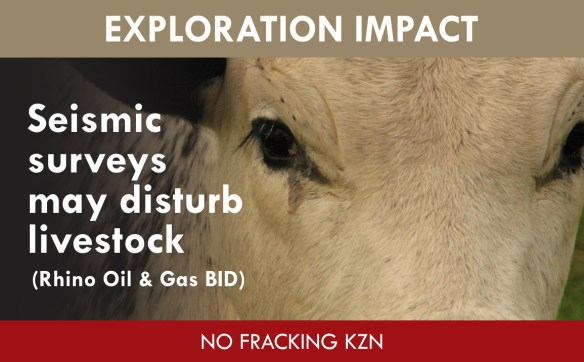 seismic surveys may disturb livestock (Rhino BID impact)