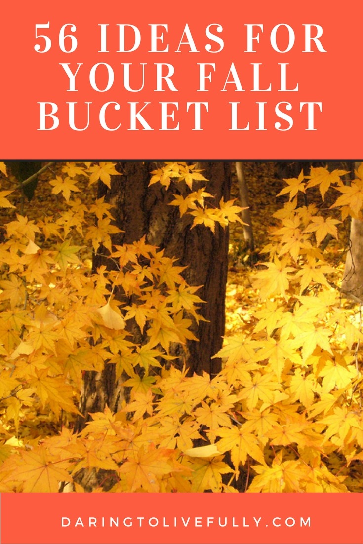 Luxurious Toddler Girl Your Fall Bucket List Daring To Live Fully Fall Ideas 2017 Fall Ideas Fall Bucket List Ideas ideas Fall Picture Ideas