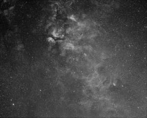 Sadr Region in Cygnus. 50mm Zuiko lens